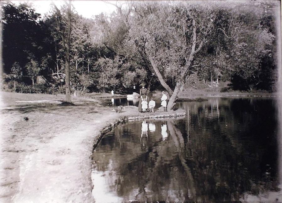 2016-15 photo Fredericks collection - Springside Park lake