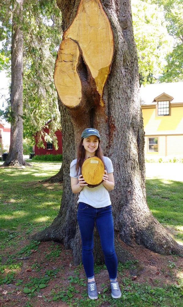 Jordan holding tree slice 6-14-17a