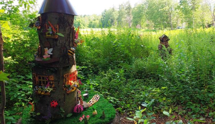 Fairy Village - east - 8-16-17a